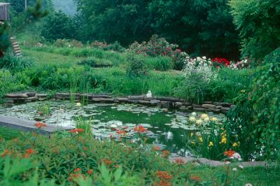 Photo by Mark Turner of the June garden at Sunshine Farm and Gardens
